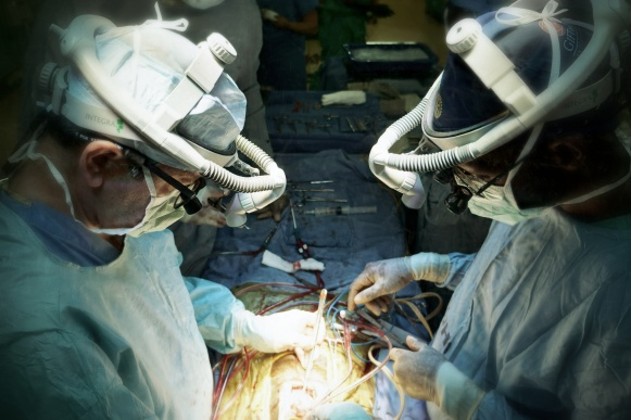 Dr. Mark left and Dr. Michael right - placing the RVOT patch. Thanks to W.L. Gore Inc. for providing the RVOT patch material!